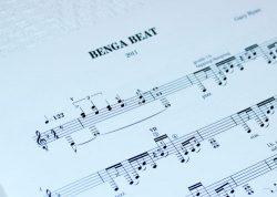 Benga Beat